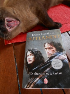 Tome 1 : Le Chardon et le Tartan